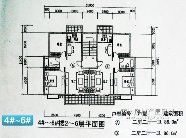 4-6#楼2-6F平面图.jpg